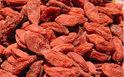 Les baies de Goji sont des compléments alimentaires sources de vitalité.