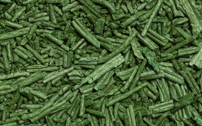 La spiruline (algue d'eau douce) est un complément alimentaire qui apporte de nombreux bienfaits à l'organisme.